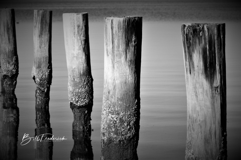 a pilings with sign
